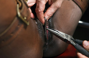 Wild BDSM and pissing pics with black..