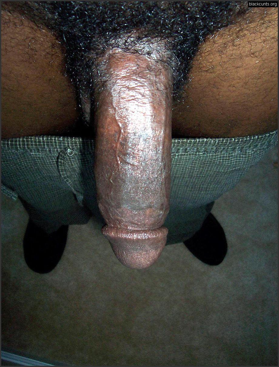 Ebony Worship Black Dick
